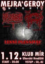 Mejra & Geroy night metalová
